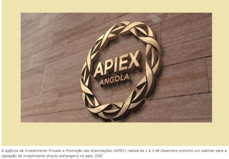 AIPEX Realiza Webinar para Captação de Investimento Directo Estrangeiro