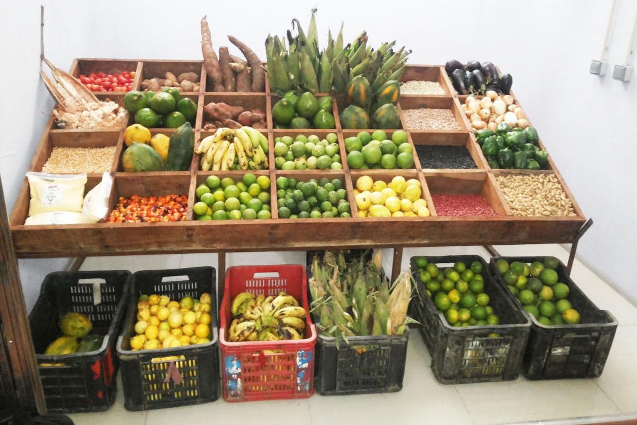 AGRICULTURA E COMÉRCIO DOMINAM PROJECTOS FINANCIADOS PELO PRODESI